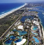 Surfers Paradise Helicopter Flight 2